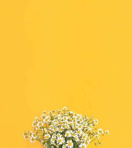 Vintage Yellow Aesthetic Wallpapers Posted By Christopher Walker