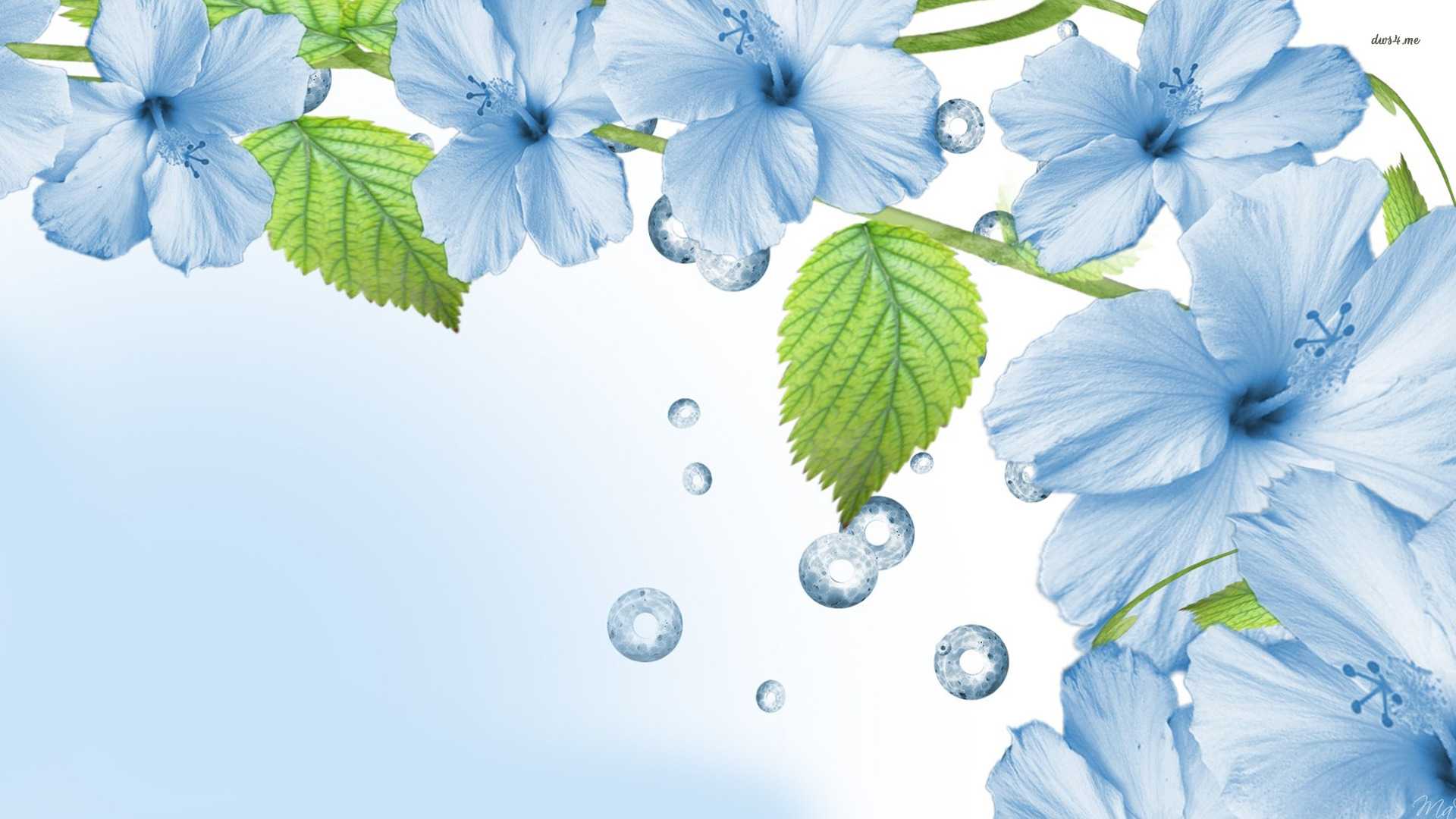 Wallpaper Blue Flowers Posted By John Cunningham