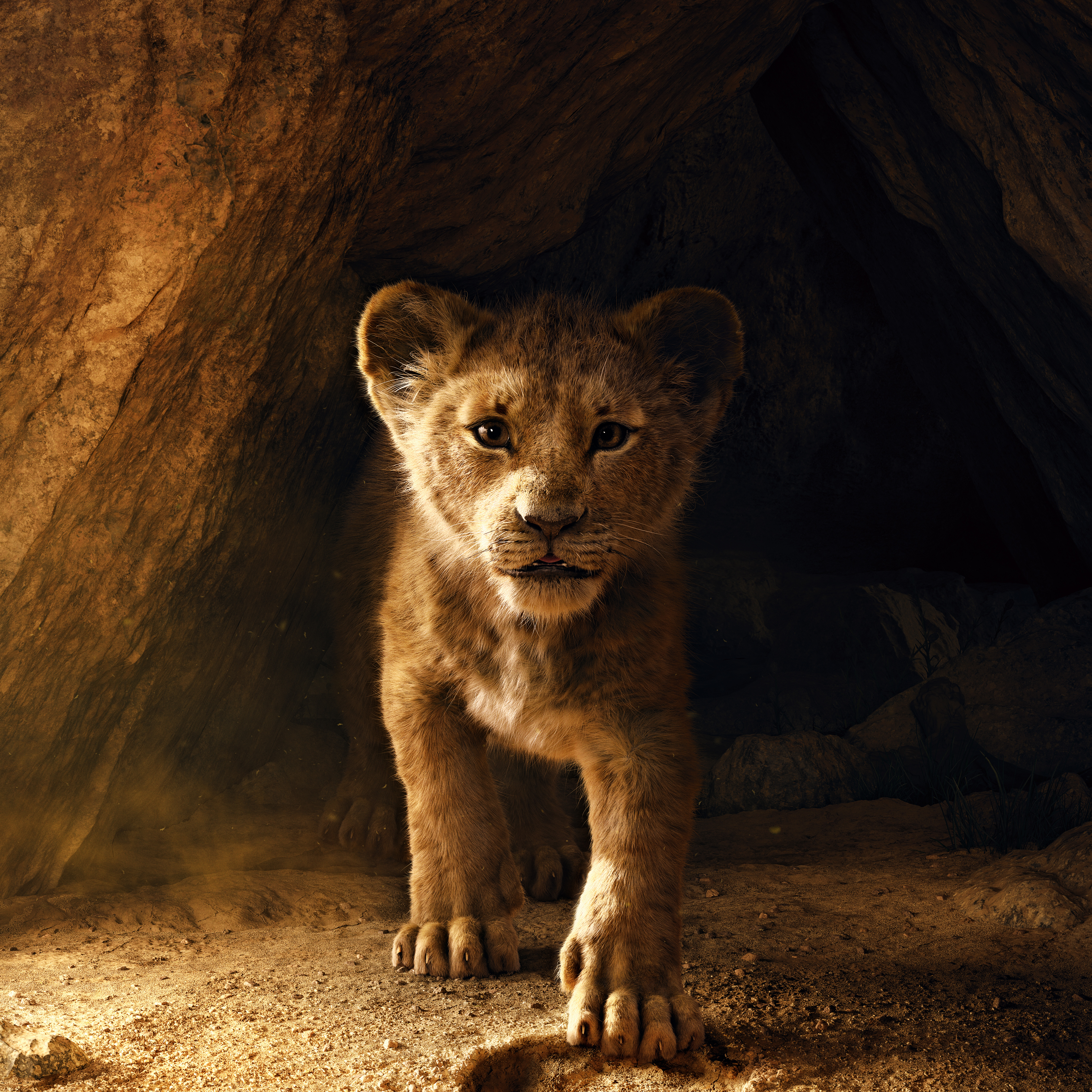 Wallpaper The Lion King, Animation, 2019, HD, 5K, Movies, 16827