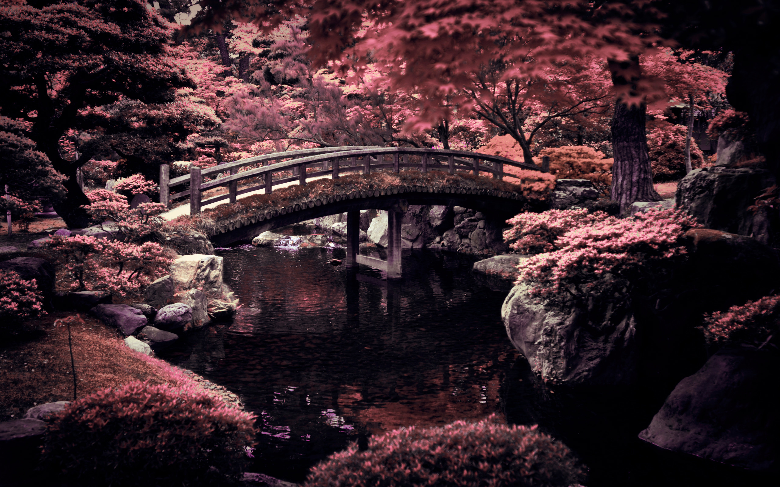 Wallpaper Japan Posted By Michelle Mercado