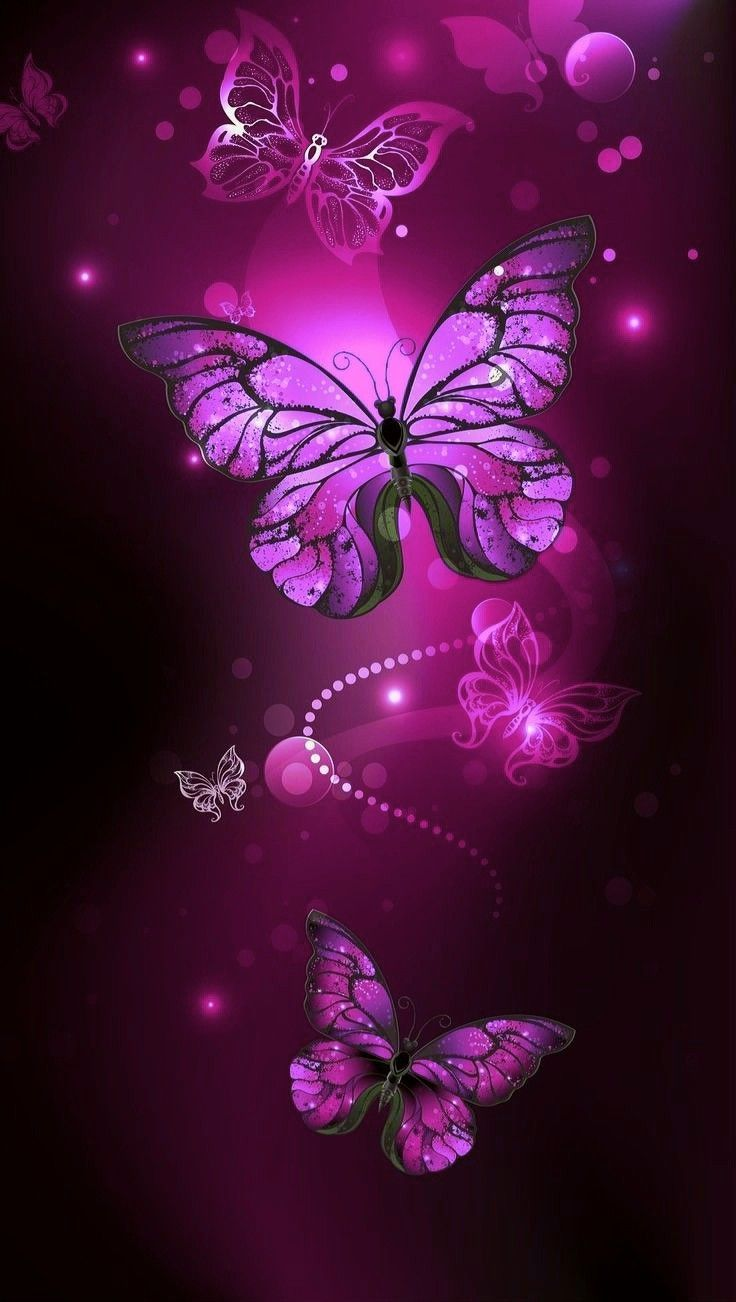 Wallpaper Of Butterflies Posted By Ryan Cunningham