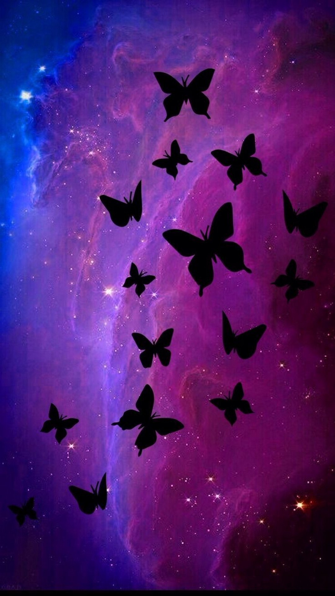 Black Butterfly Wallpaper 68+ images