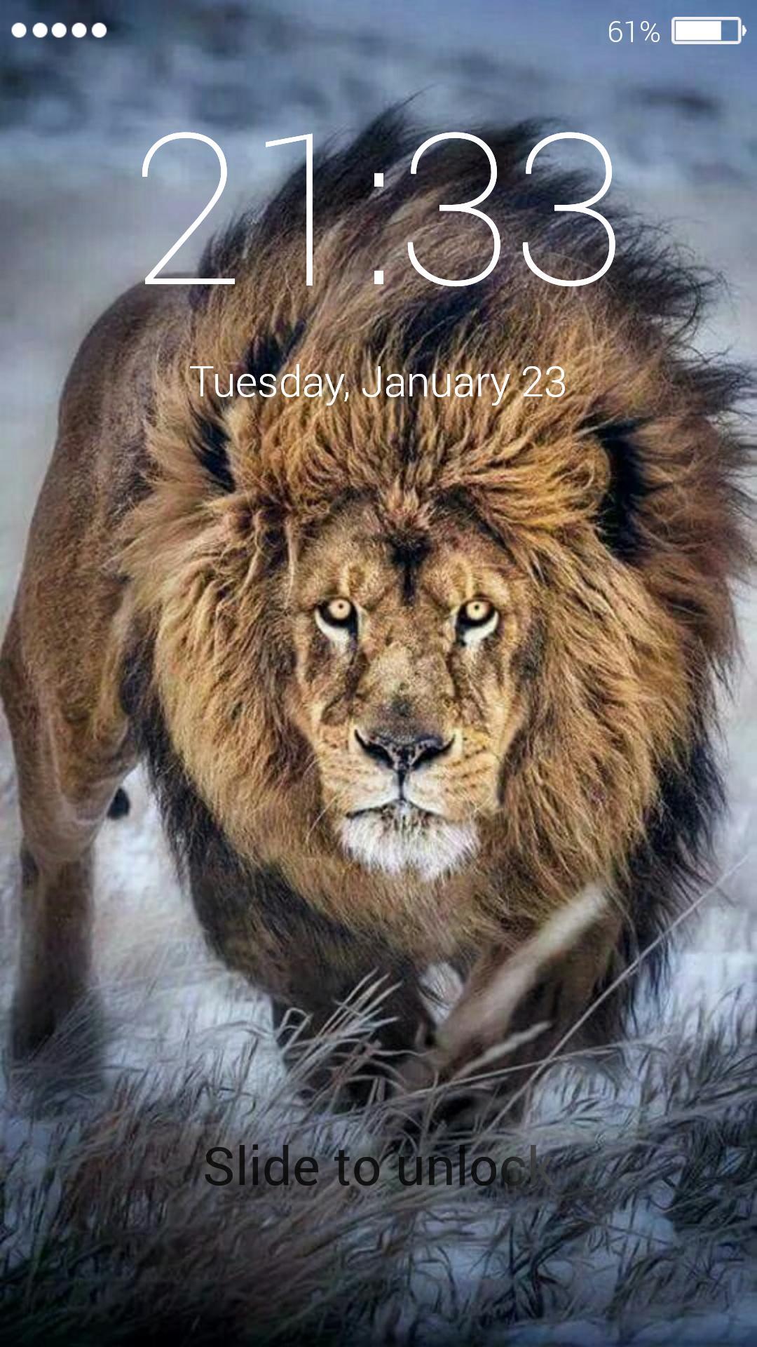 Wallpaper Of Lion Posted By John Peltier