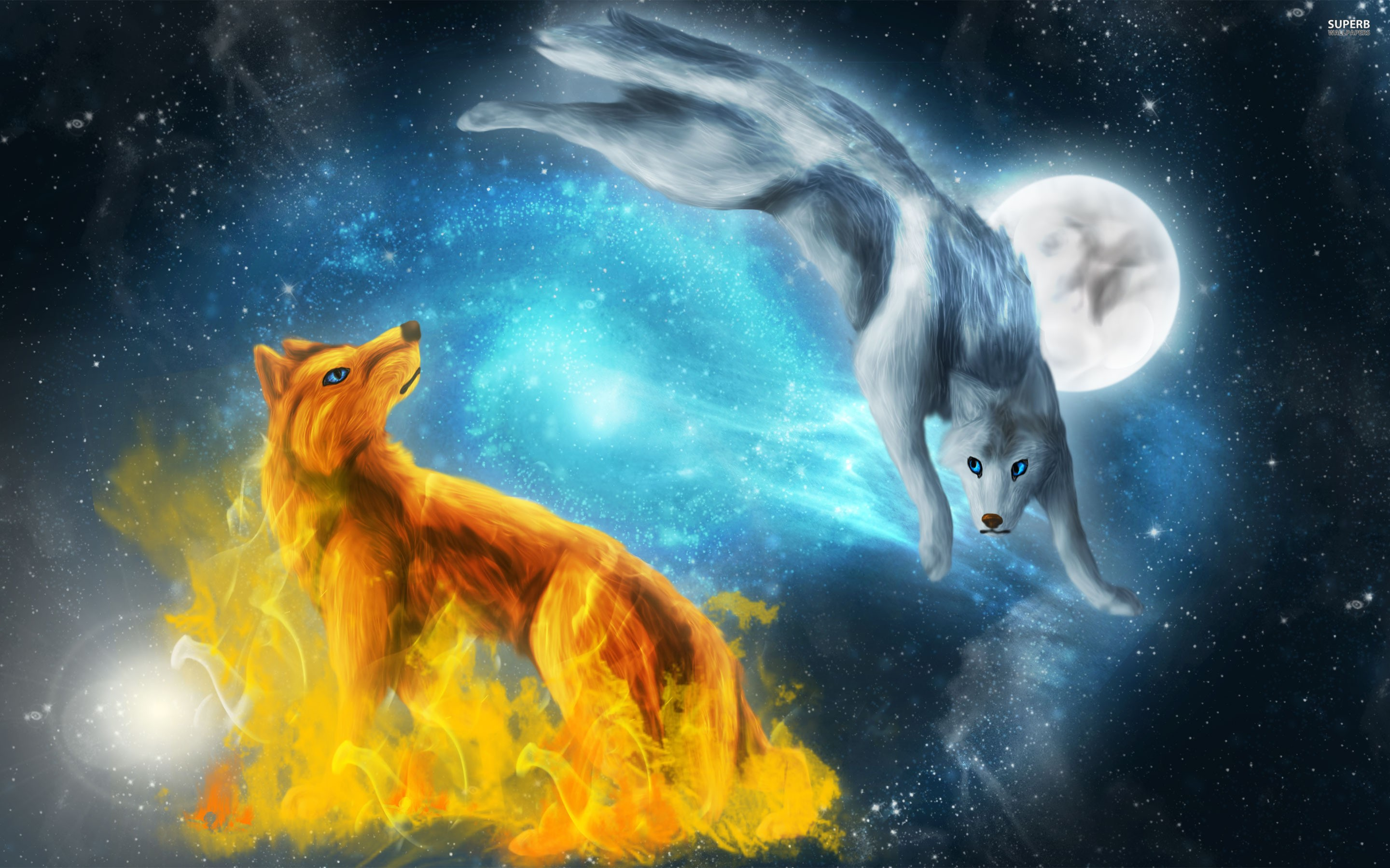 46+ Wolf wallpapers Download free stunning HD wallpapers