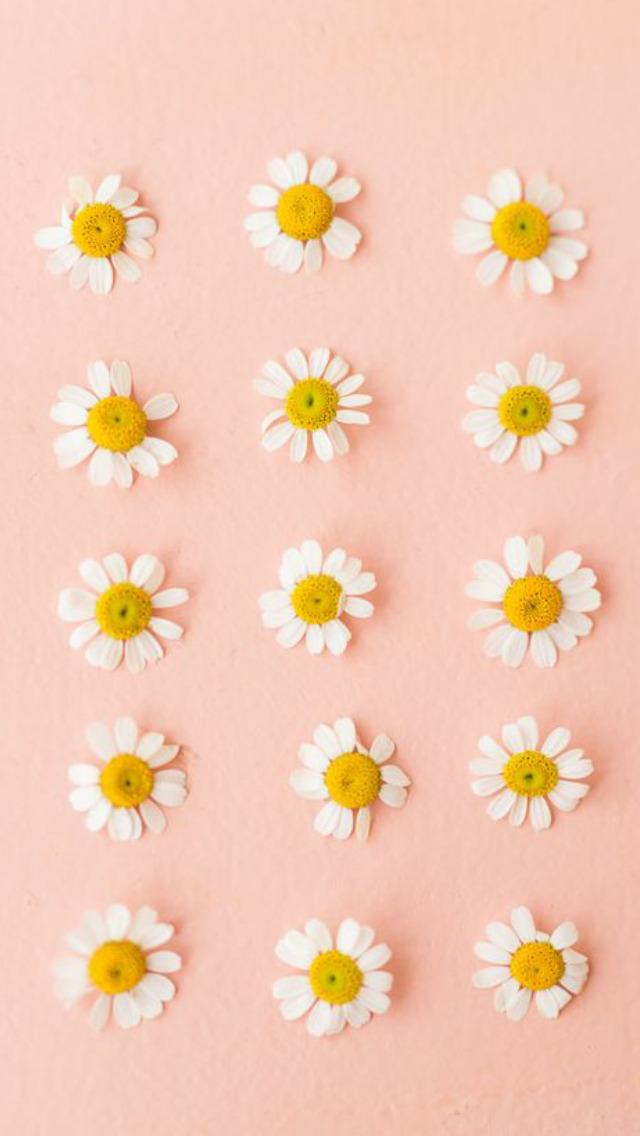 pastel green wallpaper Tumblr