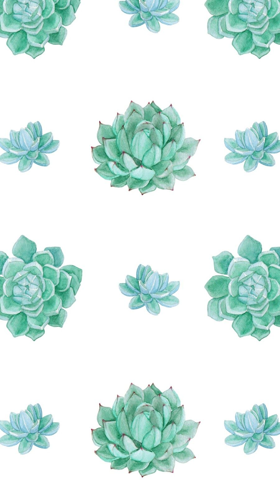 Wallpaper Succulents Posted By Michelle Simpson