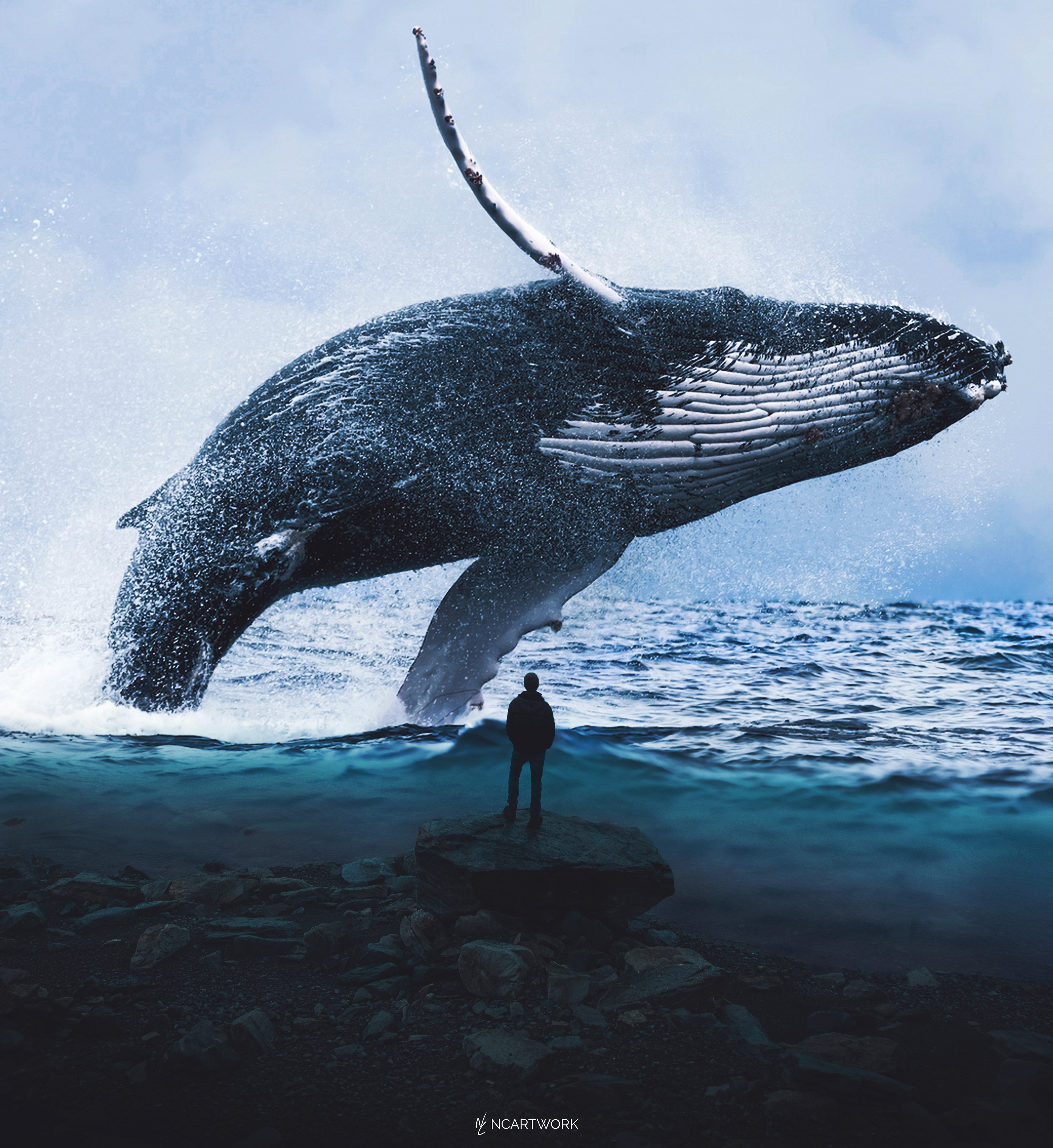 Wallpaper Whale Posted By Ethan Mercado