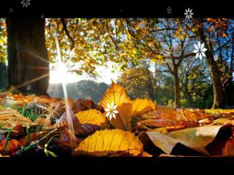 Wallpapers Autumn Posted By Christopher Johnson