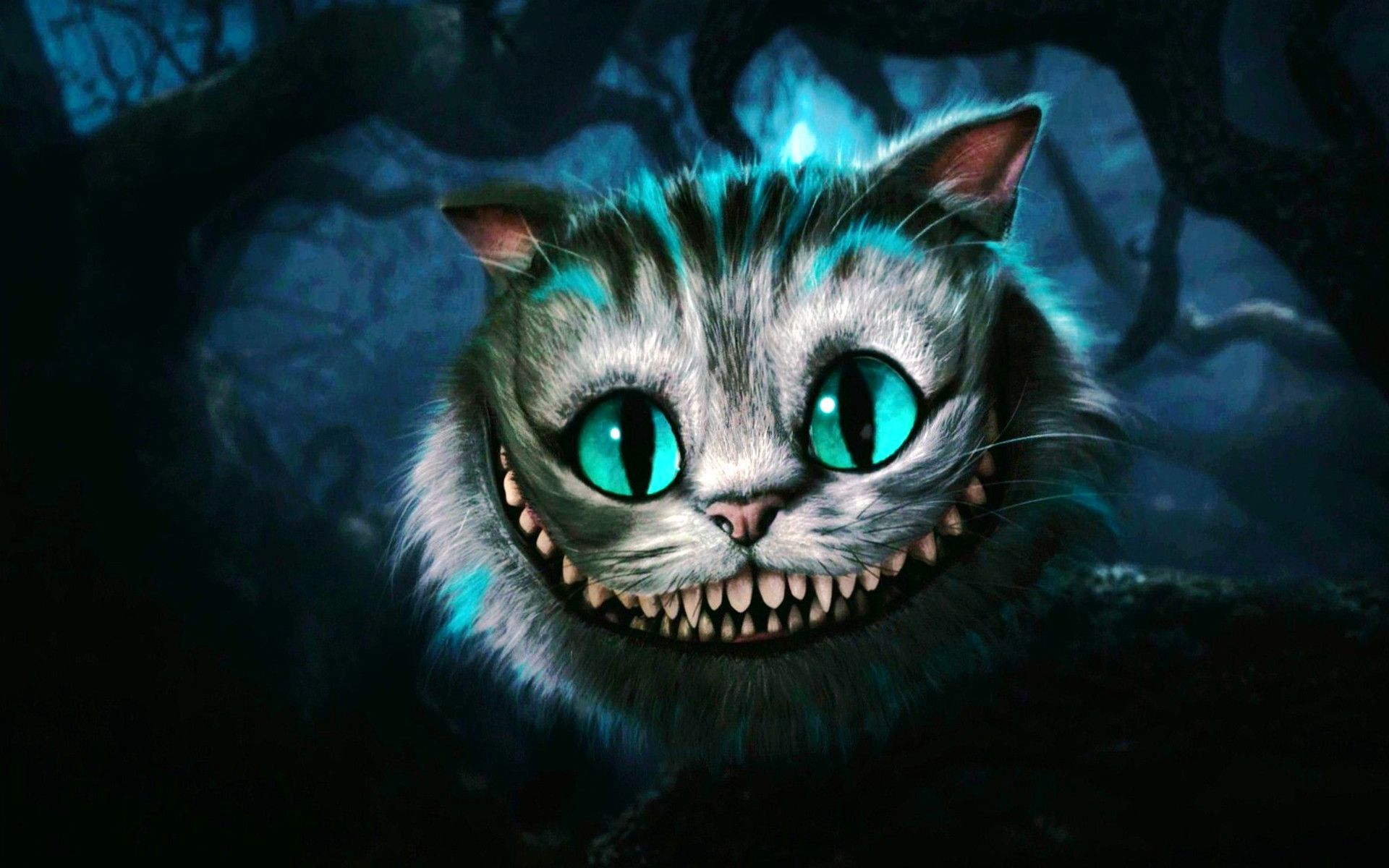 Wallpapers Cat Posted By Ethan Peltier