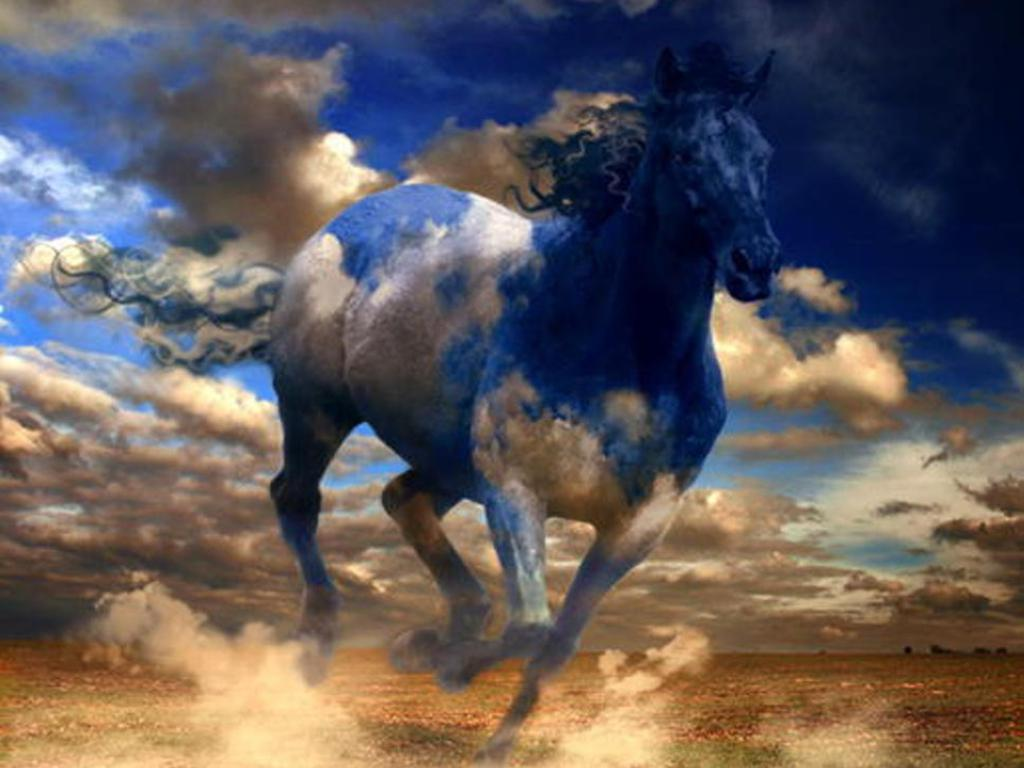 Wallpapers Horses Free Posted By Samantha Mercado