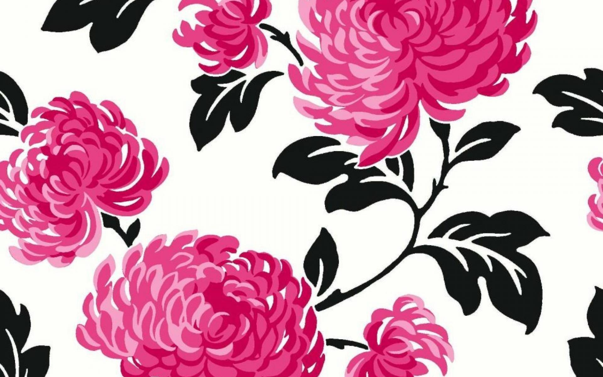 Wallpapers Pink And Black Posted By Michelle Anderson