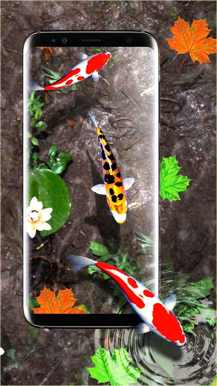 3D Koi Fish Wallpaper HD Fish Live Wallpapers Free for
