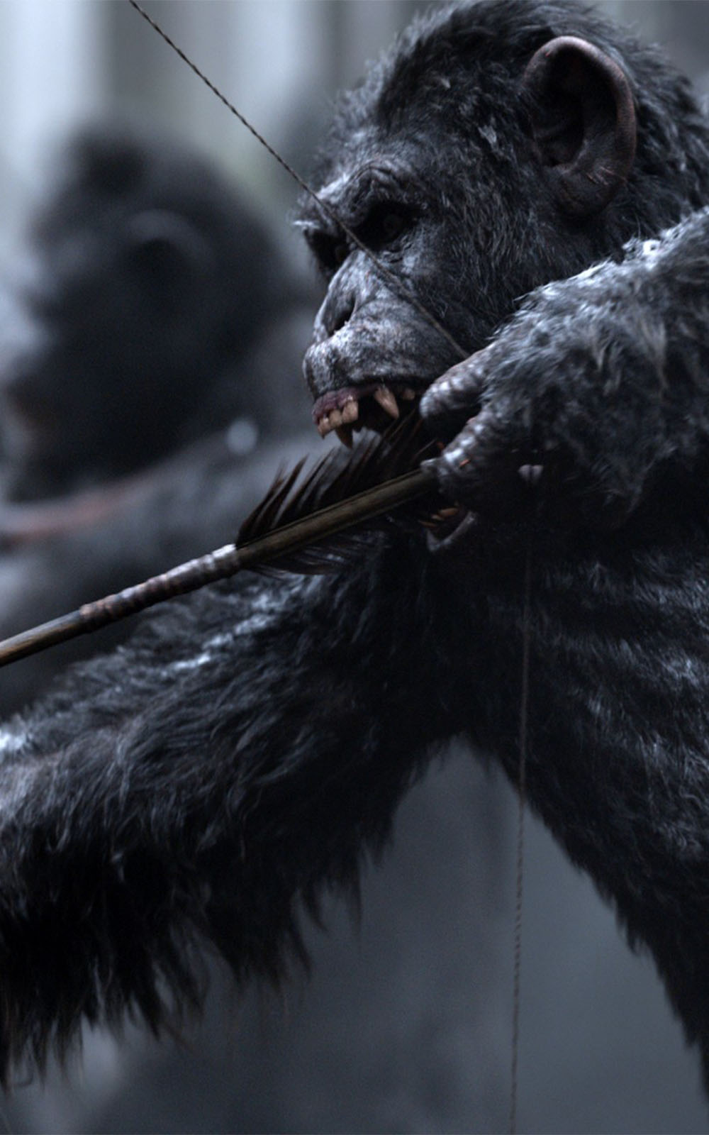 War For The Planet Of The Apes Wallpaper Posted By Michelle Thompson