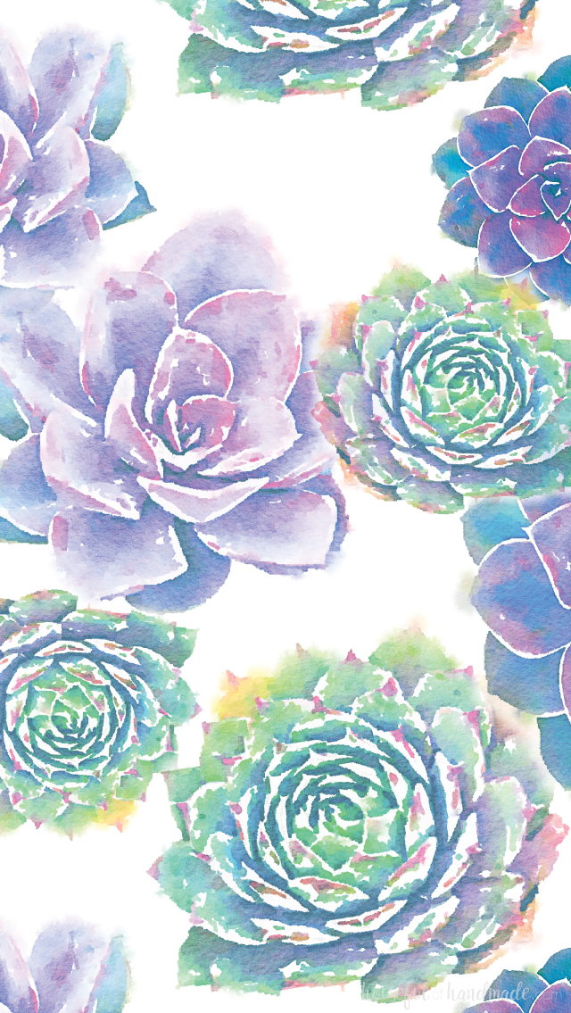 Watercolor Succulent Wallpaper Posted By Sarah Simpson