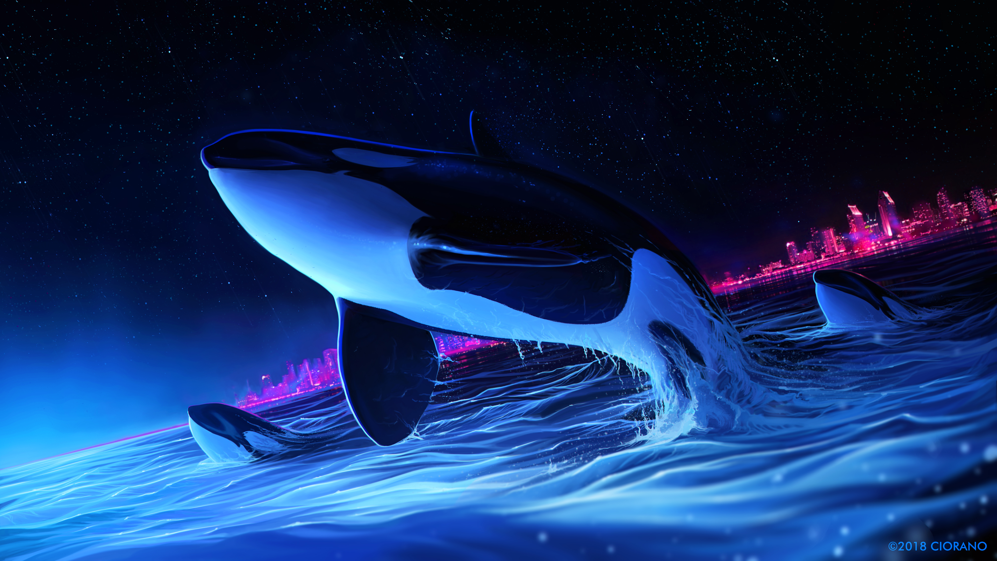 Whale Wallpaper Hd Posted By Ethan Thompson