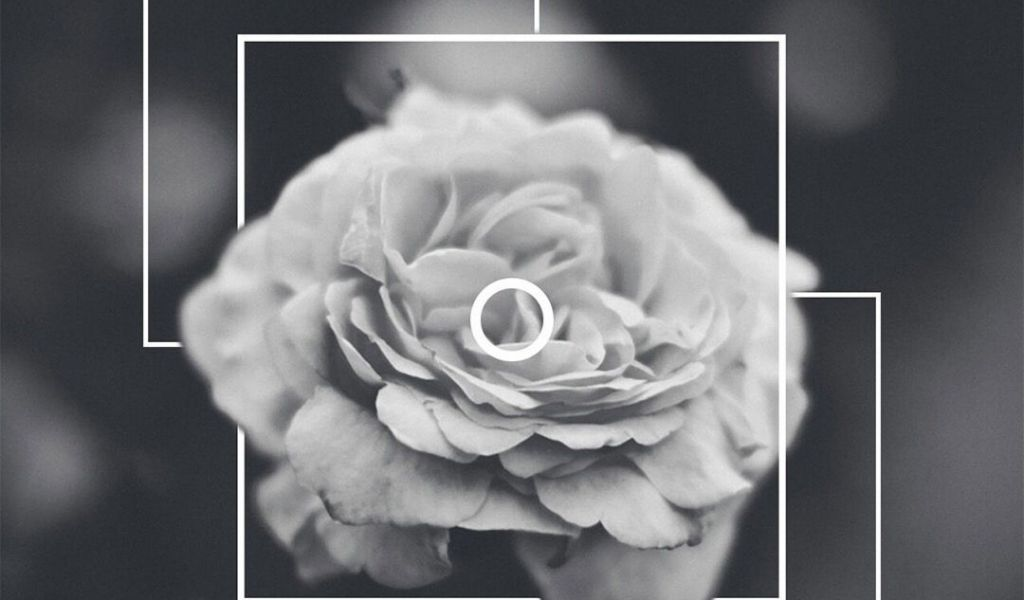 Iphone Aesthetic Backgrounds White