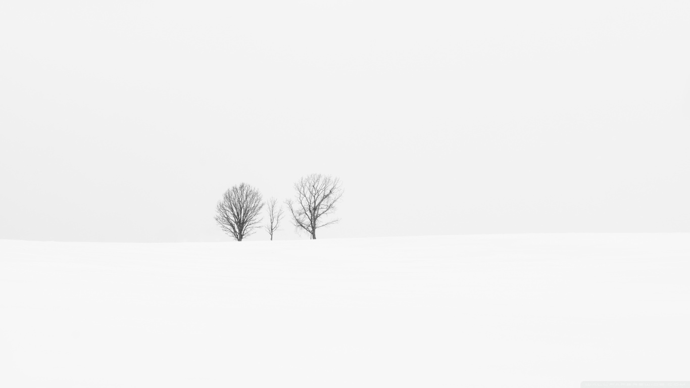 White Hd Backgrounds Posted By John Johnson