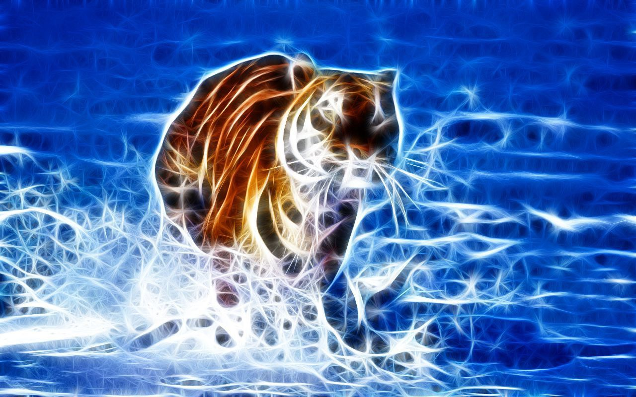 White Tiger Hd Wallpapers 1080p Posted By Zoey Simpson