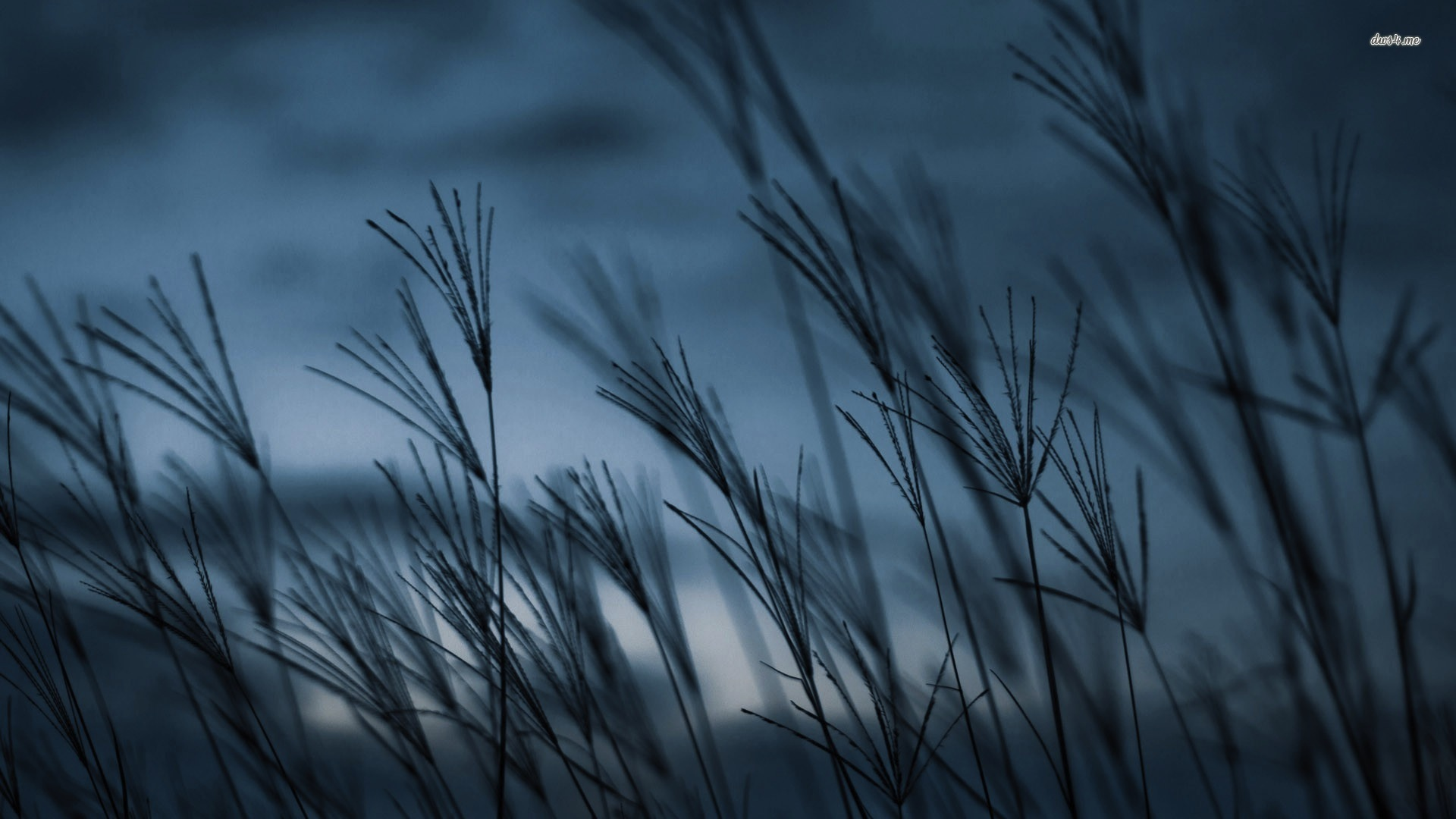 Wind Wallpaper Posted By Ethan Cunningham