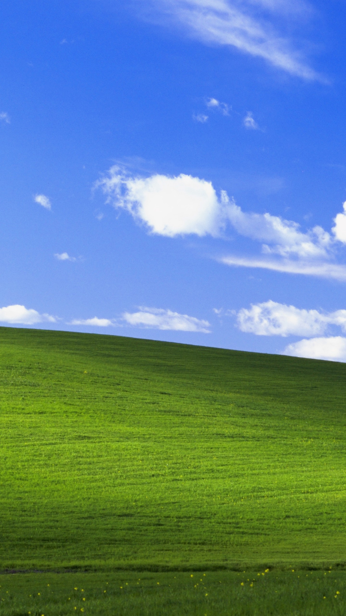 Windows Xp Default Wallpaper Black Posted By Zoey Simpson