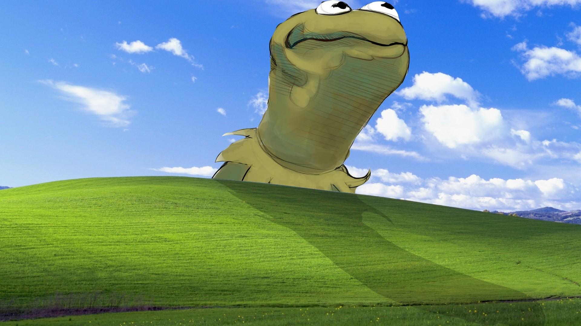 Download 1920x1080 Bliss windows xp kermit the frog