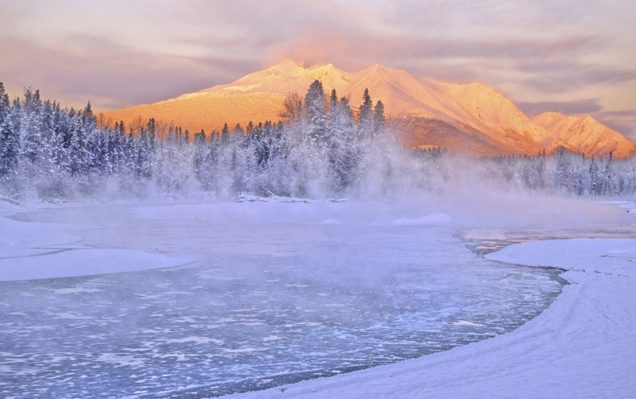 Mountain Forest Sea Fog Winter wallpapers Mountain Forest
