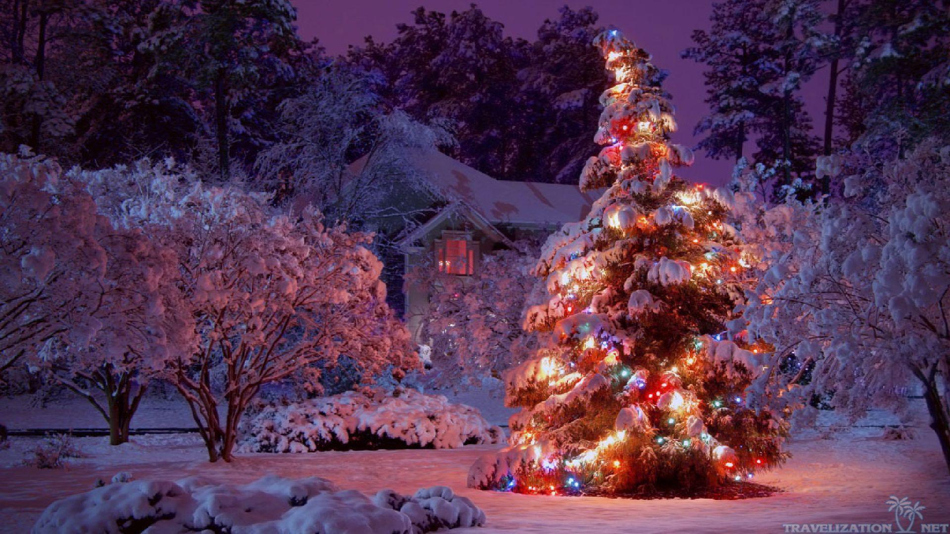 Winter Christmas Wallpapers Free ~ Monodomo Christmas