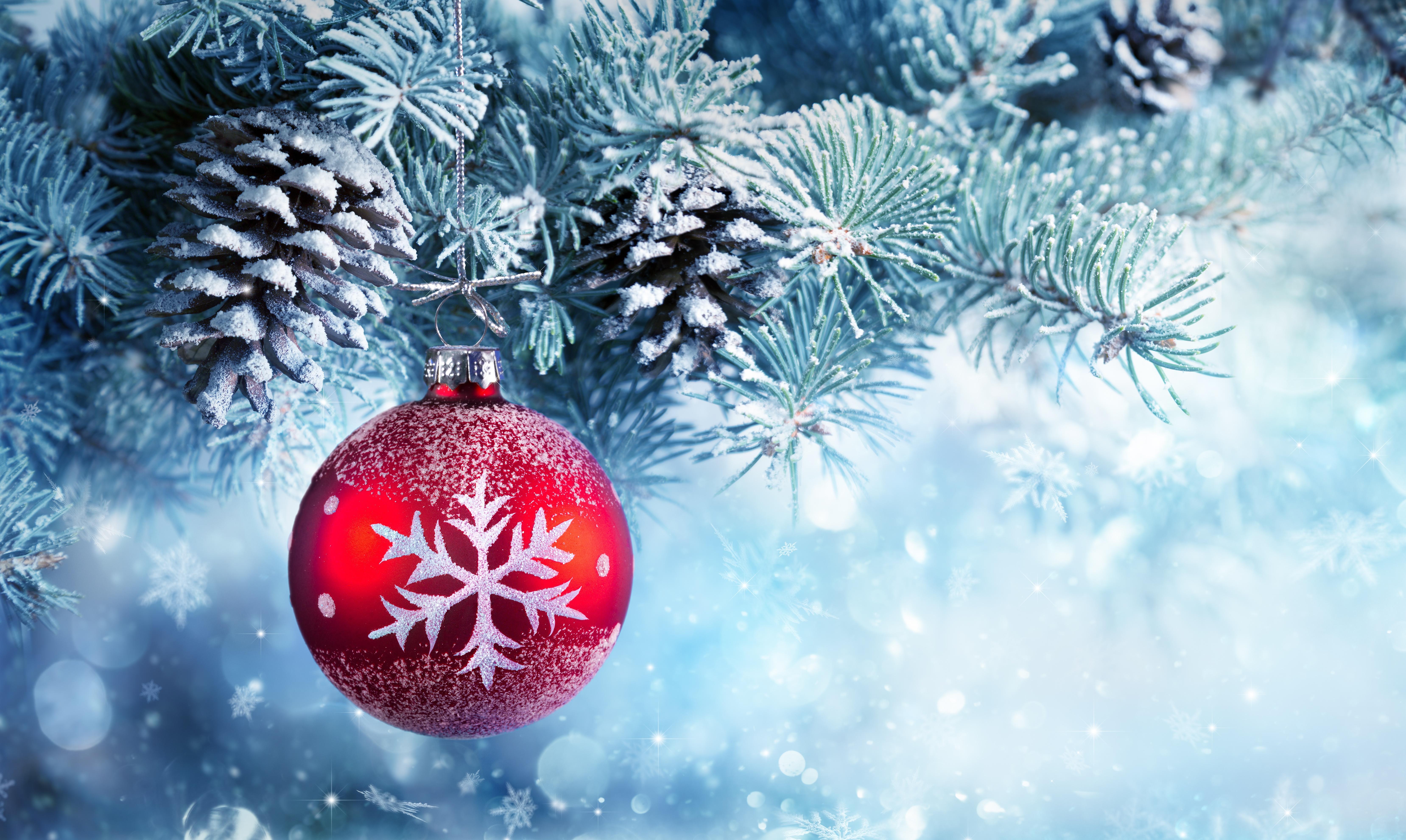 Wallpaper Christmas ball, Christmas ornament, Winter, Pine