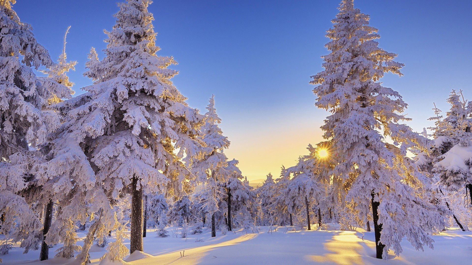 Winter Scene Wallpaper For Computer Posted By Zoey Anderson