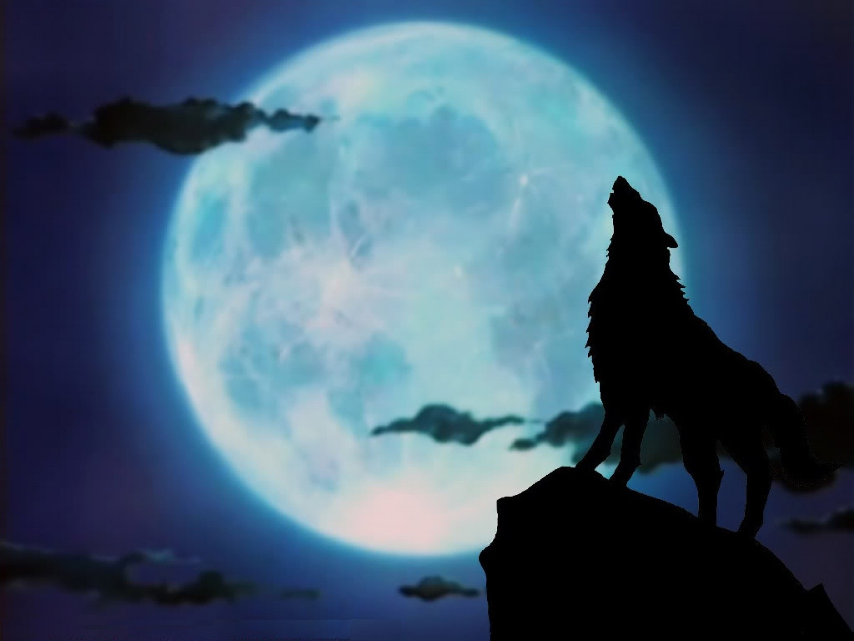 Wolf Desktop Backgrounds Posted By Christopher Johnson