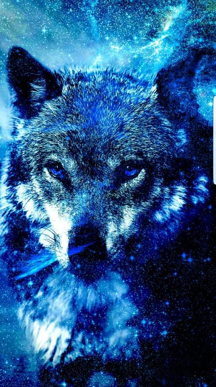 4K Galaxy Wolf wallpaper