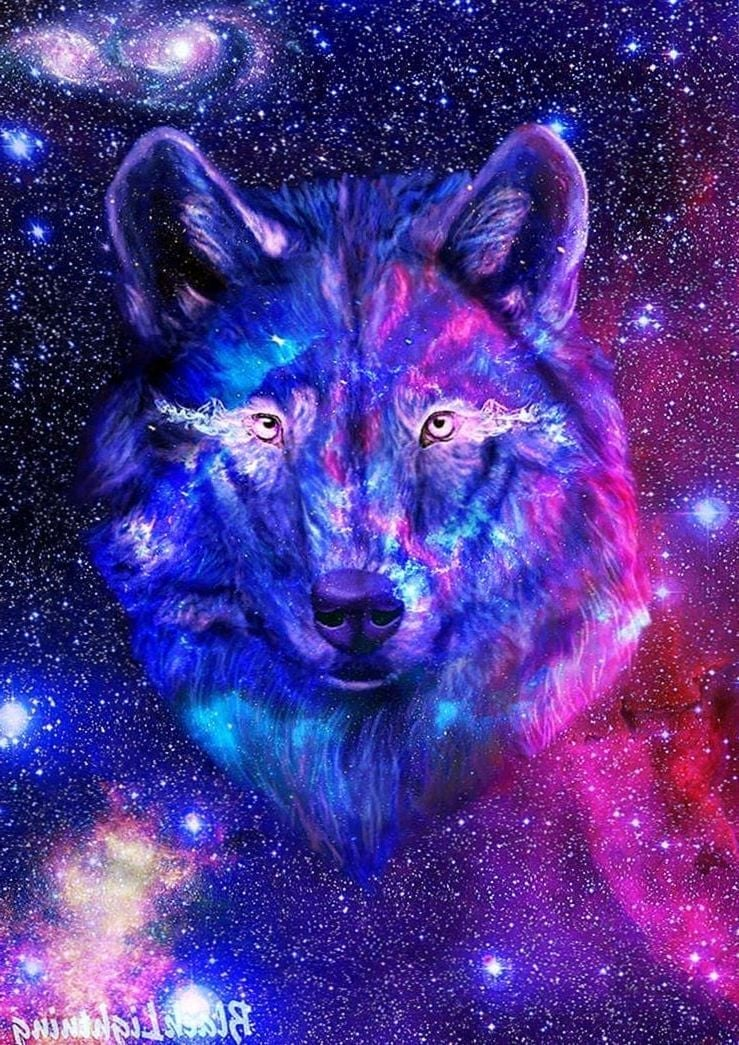 Wolf Wallpapers Galaxy Wolf Wallpapers.Pro