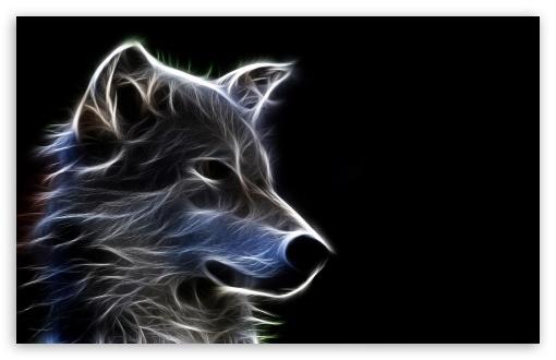 Wolf 4K HD Desktop Wallpaper for 4K Ultra HD TV Tablet