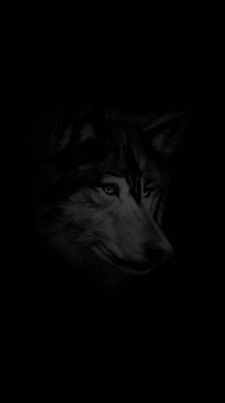Wolf Wallpaper Free Posted By Ryan Simpson