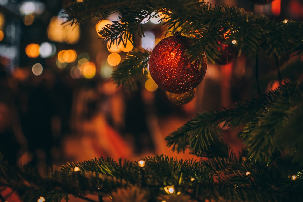 500+ Merry Christmas Pictures HD Download Free Images on
