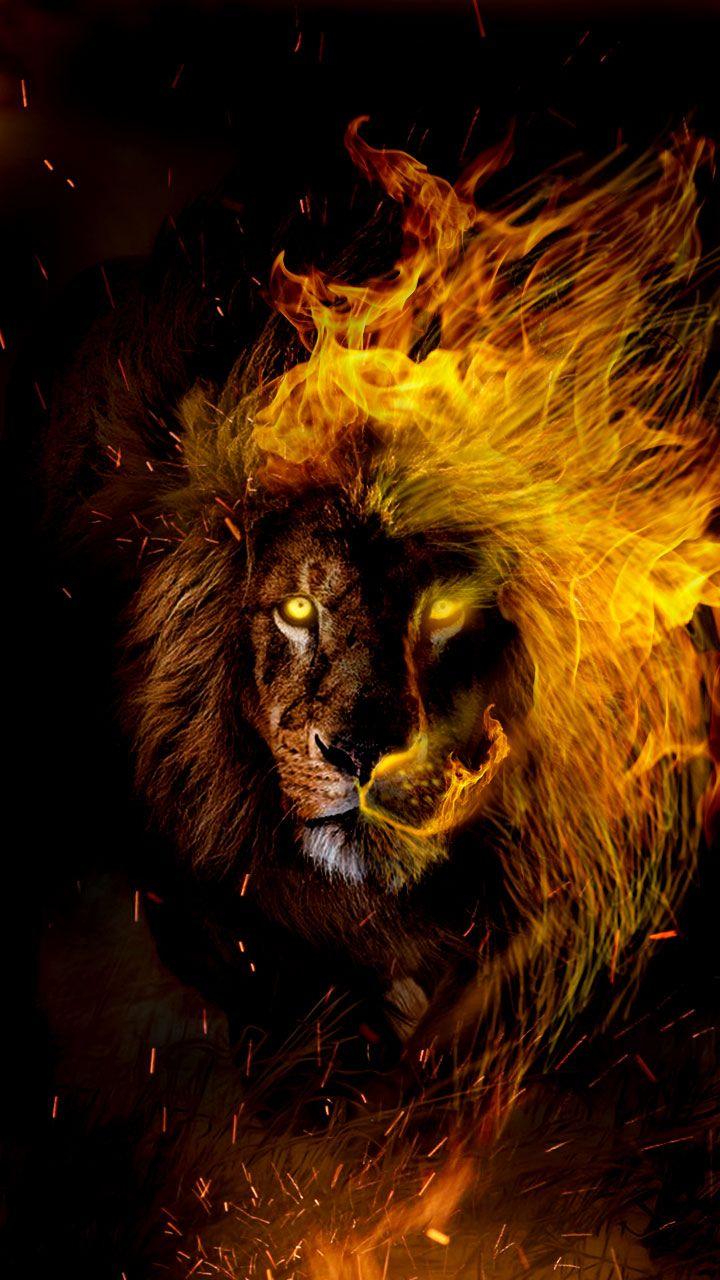 Zodiak Leo Wallpaper Posted By Samantha Peltier
