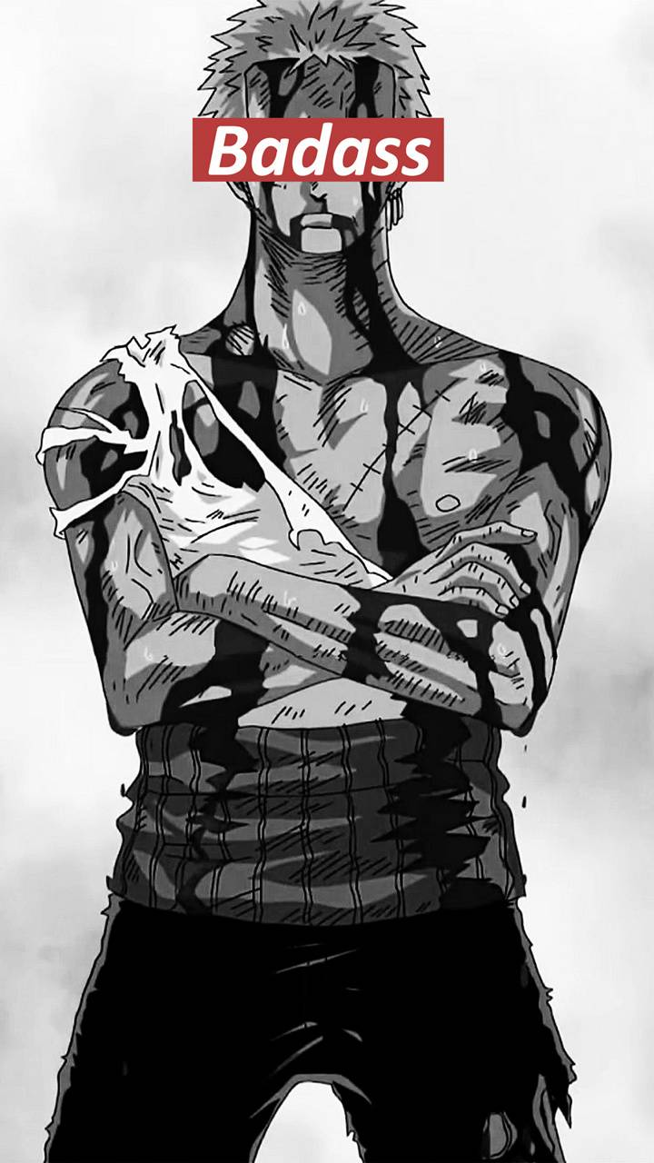 Zoro Wallpaper Posted By John Simpson